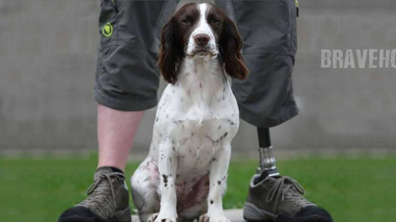 spaniel dog sits between man's legs with left prosthetic foot